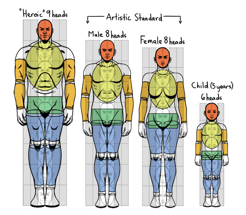 Standard proportions of the human body for Size and proportion