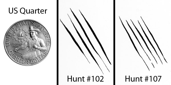 A Hunt #102 and #107 with US quarter for size comparison. Both quills were pushed to near-breaking point for maximum line width.